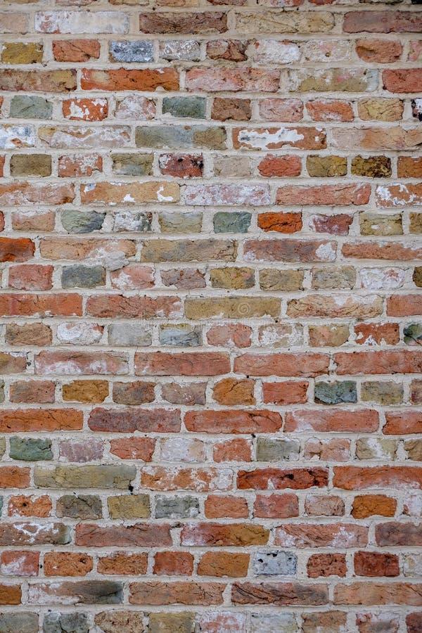 Il muro di mattoni, con i mattoni colorati variopinti, rosso, verde, grigi, brunisce di estate a Bruges, Belgio, struttura rossa  immagine stock libera da diritti
