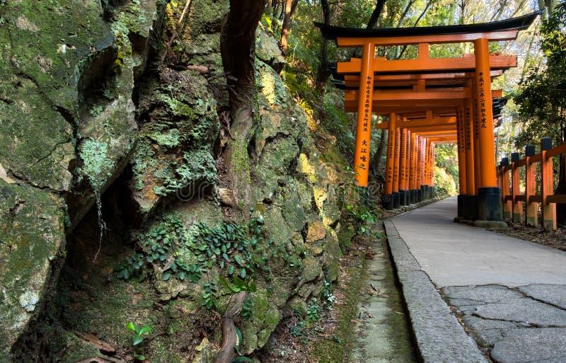 Il muschio verde ha coperto la parete di pietra ed i portoni di Torii di rosso in Fushimi Inari shrine a Kyoto, Japann immagine stock