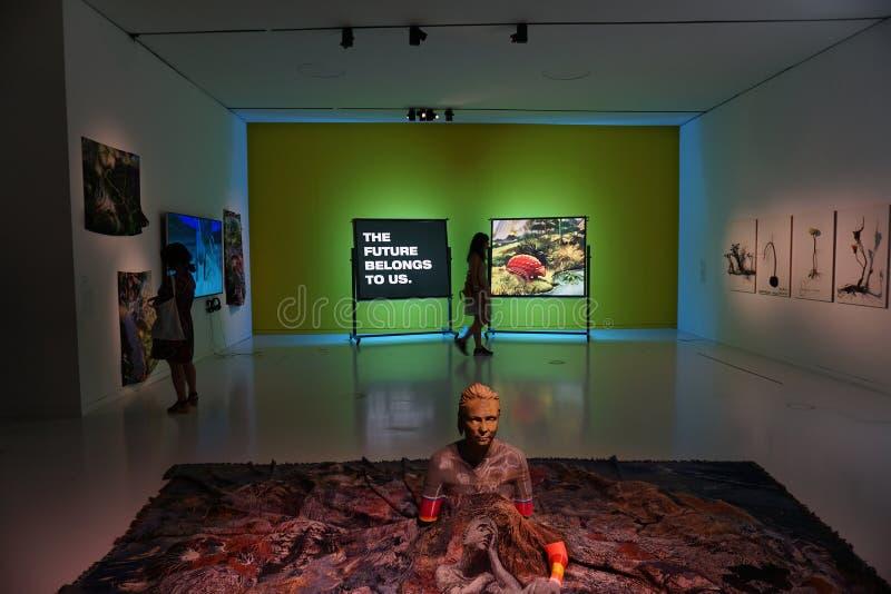 Il museo nazionale di arte contemporanea a Lisbona, Portogallo fotografia stock libera da diritti
