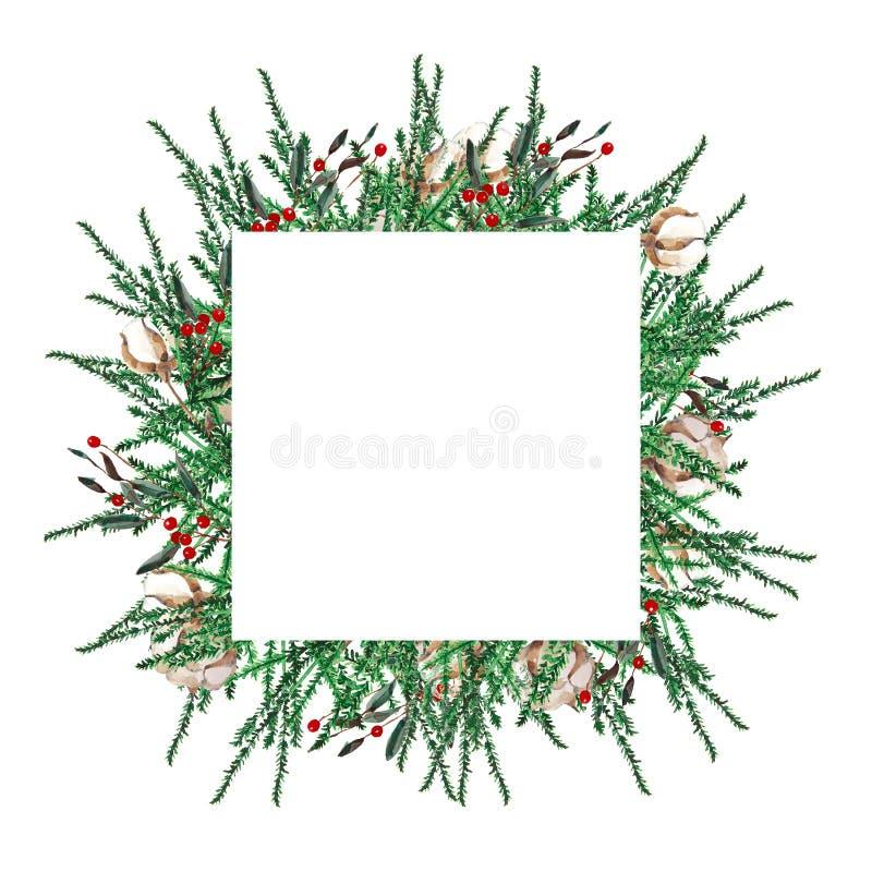 Il Natale dell'acquerello incornicia la forma quadrata Modello dei rami dell'abete, legno di bosso, bacche rosse su un fondo bian illustrazione di stock