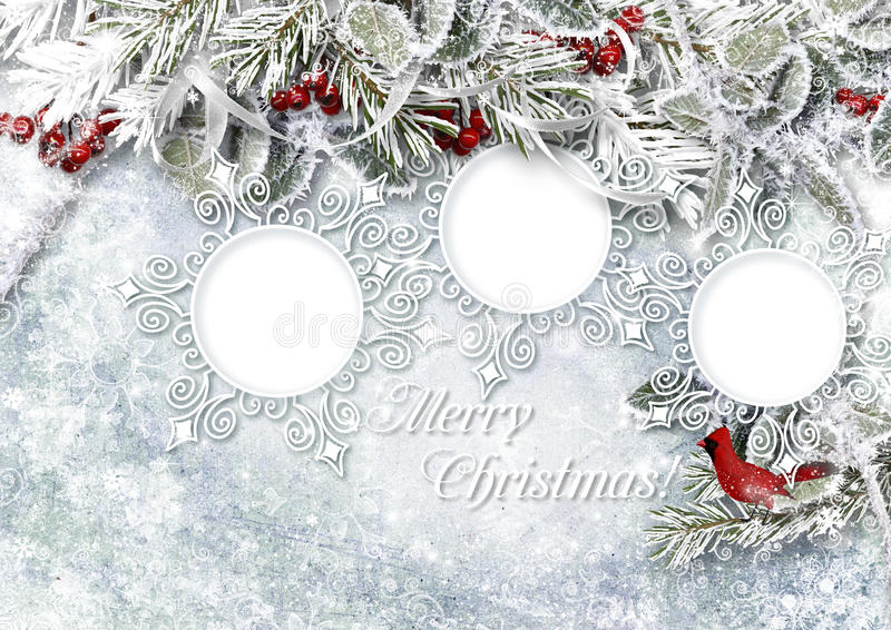 Il Natale ghiaccia il fondo con la struttura, agrifoglio e con gelo illustrazione vettoriale