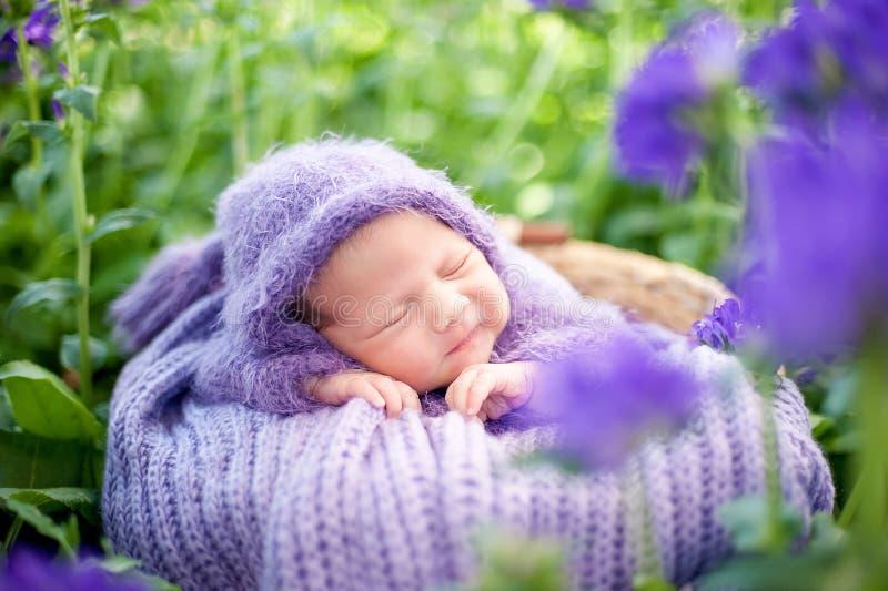 Il neonato sorridente di 17 giorni sta dormendo sul suo stomaco nel canestro sulla natura nel giardino all'aperto fotografia stock libera da diritti