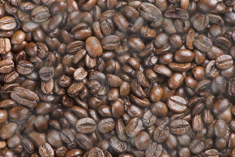 Il nero caldo ha arrostito i fagioli del caffè Arabica con effetto del fumo immagini stock