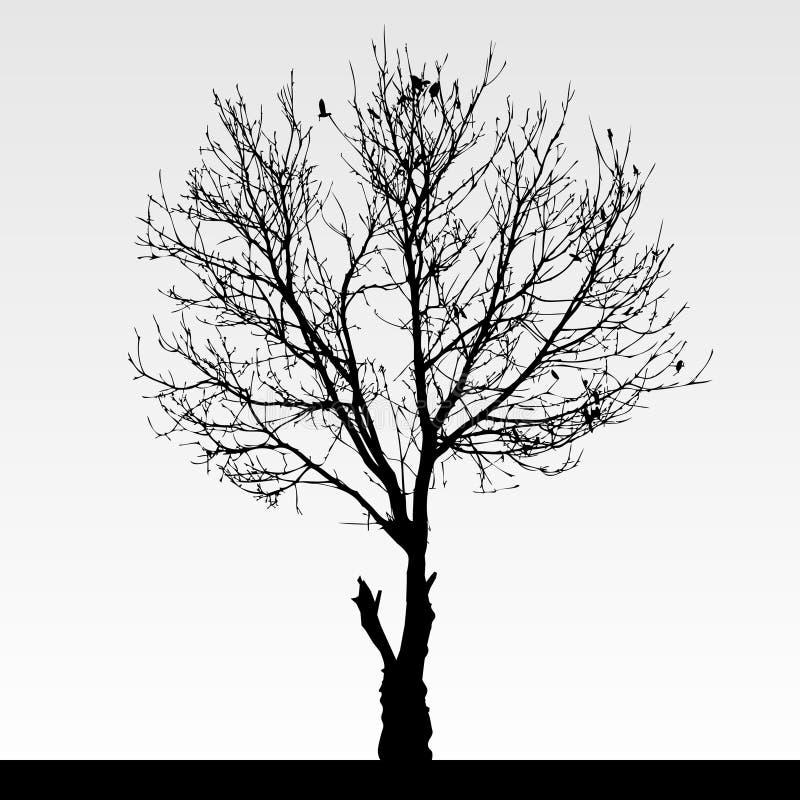 Il nero della siluetta dell'albero illustrazione vettoriale