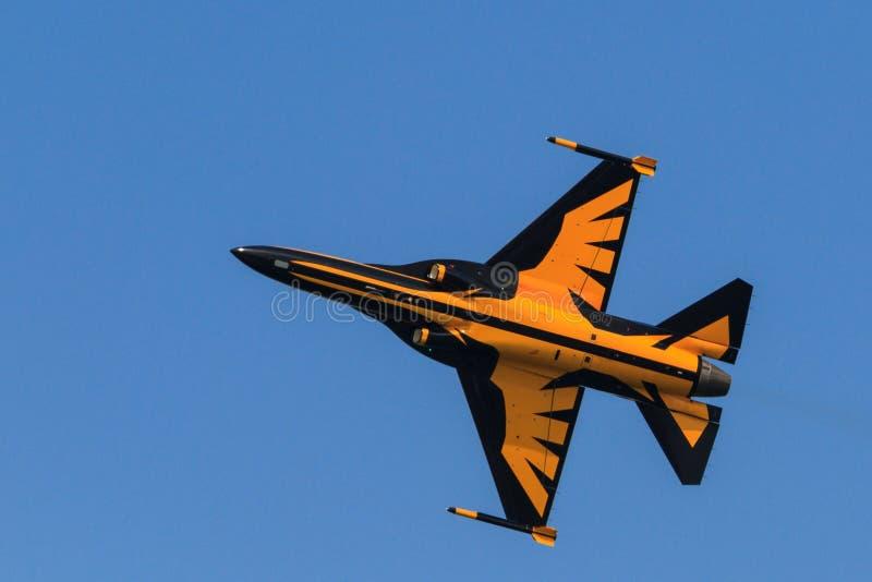 Il nero Eagles di ROKAF immagini stock