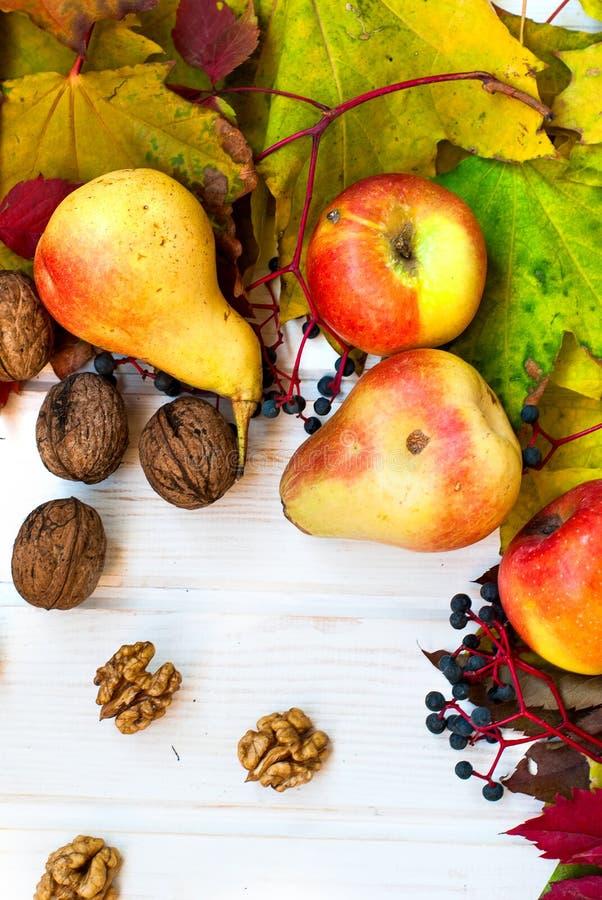 Il nocciolo ha sgusciato le noci, le pere mature e le mele nei precedenti fotografia stock