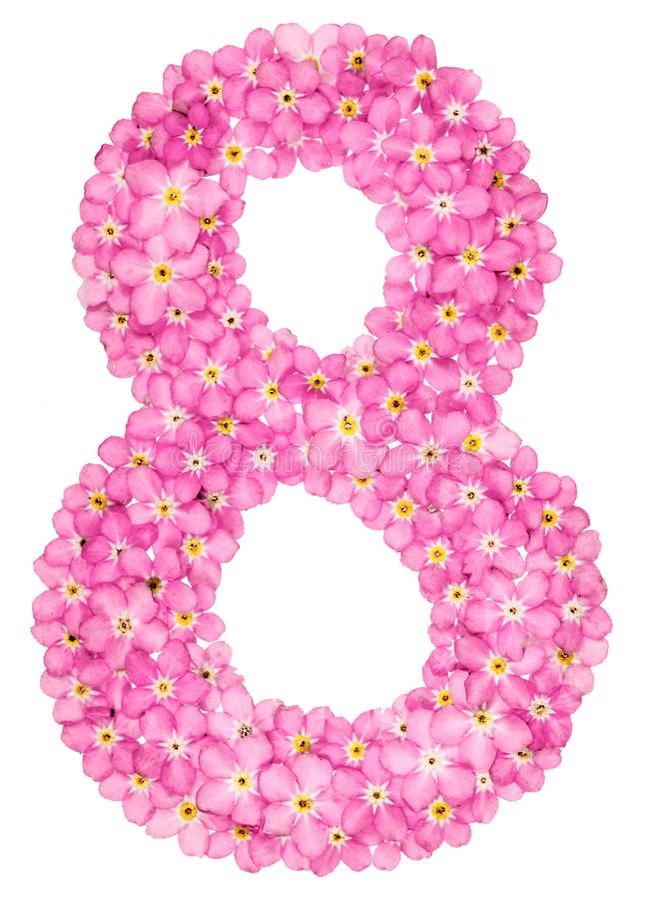Il numero arabo 8, otto, da nontiscordardime rosa fiorisce, isolat fotografia stock