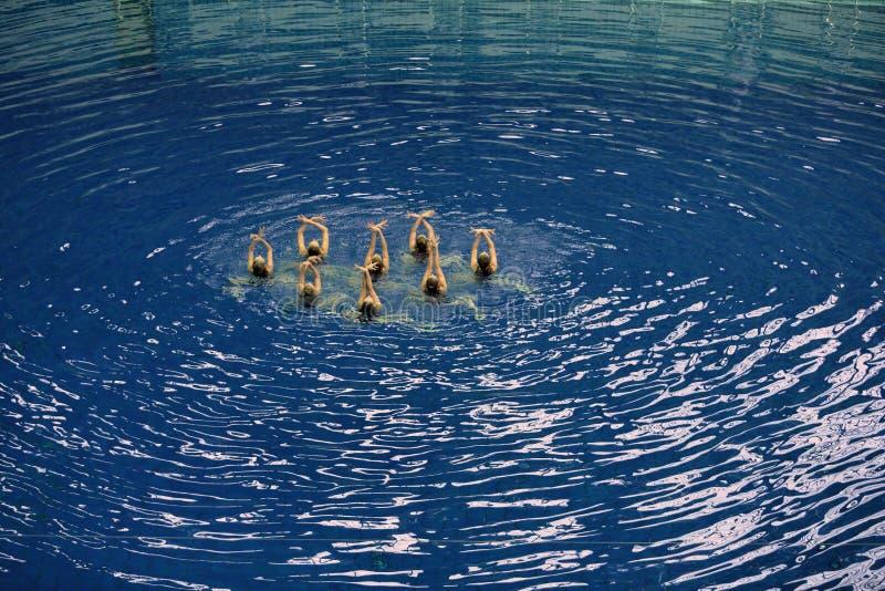 Il nuoto sincronizzato delle donne nello stagno immagini stock