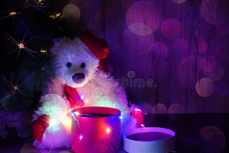 Il nuovo anno, orso di Natale sta sedendosi sotto l'albero con una scatola rossa del giro vuoto aperto per mettere l'oggetto Spaz fotografia stock libera da diritti