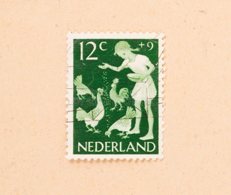 IL 1960 OLANDESE: Un bollo stampato nei Paesi Bassi mostra i polli di un'alimentazione dei bambini, circa 1960 immagine stock