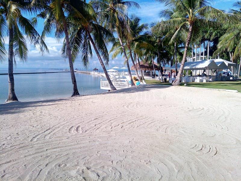 Il Pacifico ricorre Cebu fotografie stock libere da diritti