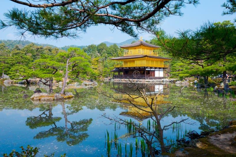 Il padiglione dorato, tempio di Kinkakuji a Kyoto, Giappone fotografie stock libere da diritti