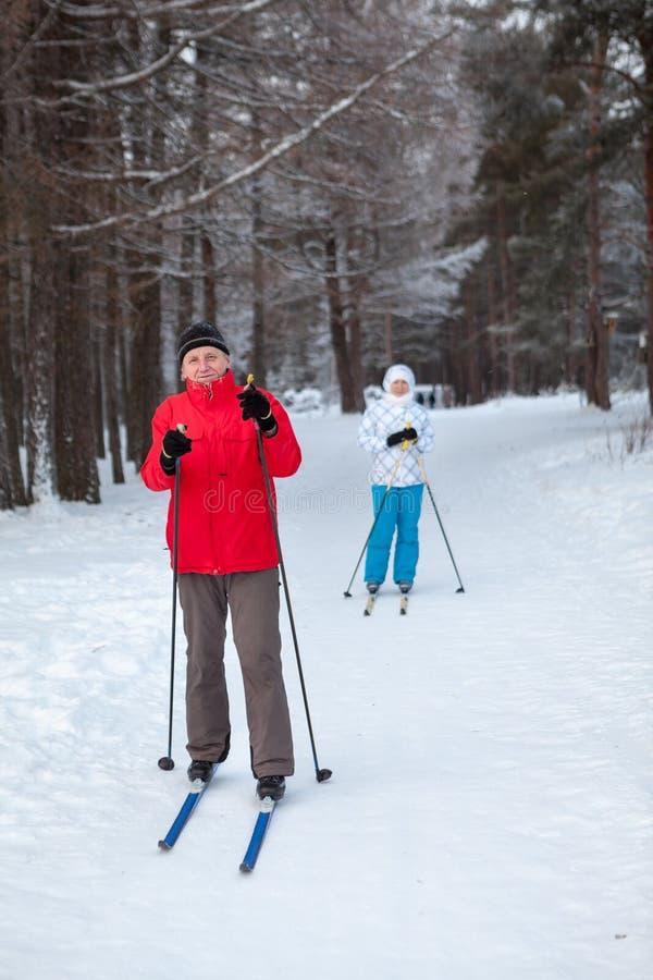 Il padre e la figlia restano insieme su corsa con gli sci della neve fatta funzionare in foresta invernale immagine stock libera da diritti