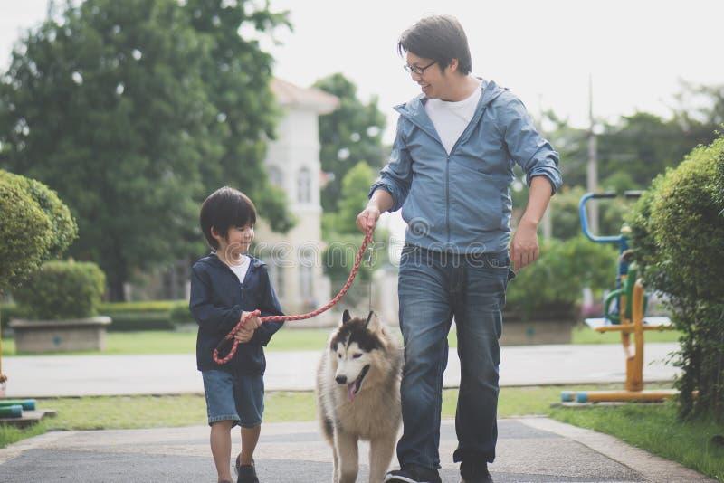 Il padre ed il figlio che camminano con un husky siberiano indossano nel parco immagine stock