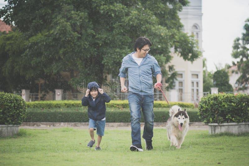 Il padre ed il figlio che camminano con un husky siberiano indossano nel parco fotografia stock libera da diritti
