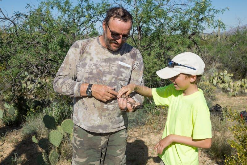 Il padre mostra al bambino una lucertola rara - mostro di Gila fotografie stock libere da diritti