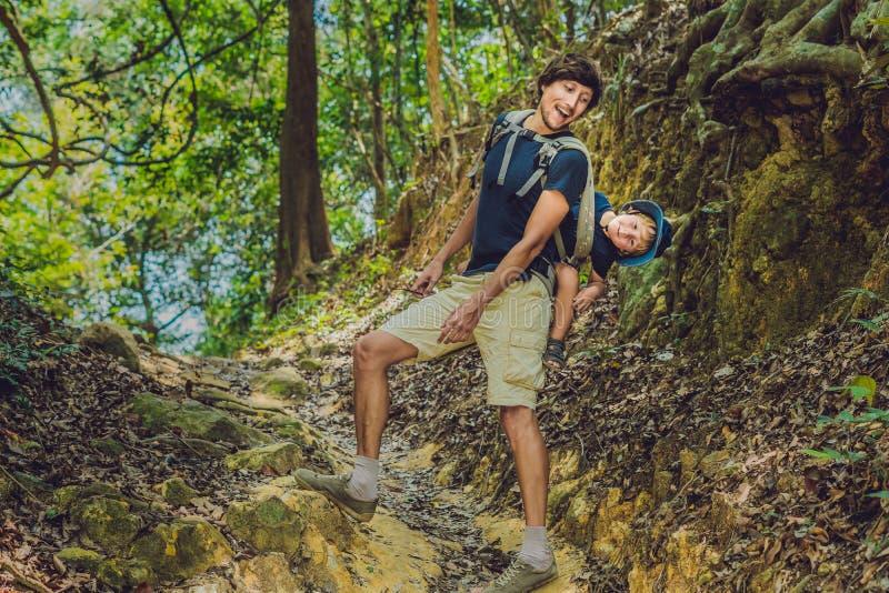 Il padre porta suo figlio in un bambino che portare sta facendo un'escursione nel turista della foresta sta portando un bambino s fotografie stock libere da diritti