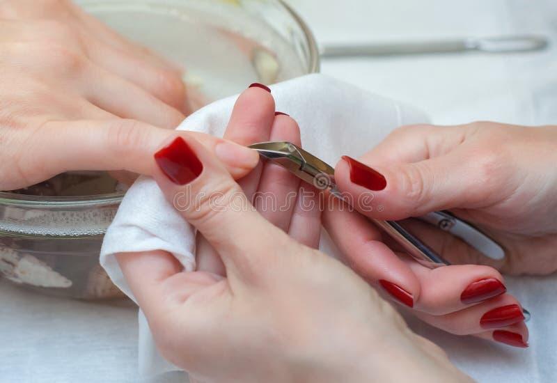Il padrone del manicure taglia le cuticole sulle mani nel salone di bellezza fotografia stock libera da diritti
