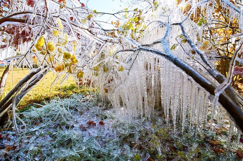 Il paesaggio bianco puro del ghiacciolo fotografie stock libere da diritti