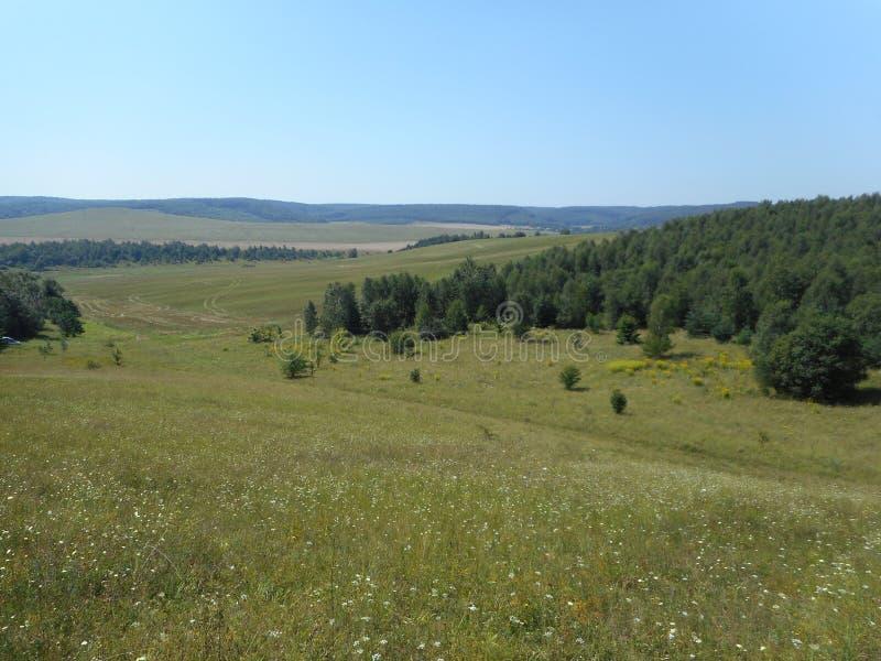 Il paesaggio collinoso intorno al villaggio di Vydra, distretto di Brody immagine stock libera da diritti