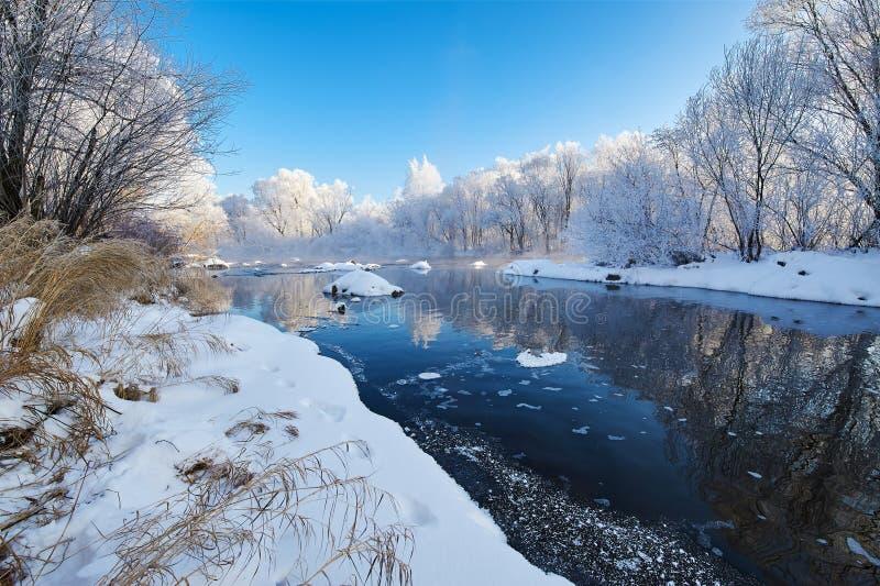 Il paesaggio del fiume di inverno immagine stock libera da diritti