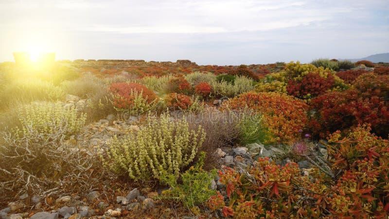 Il paesaggio dell'isola di Gramvoussa, in primavera in Grecia fotografia stock libera da diritti