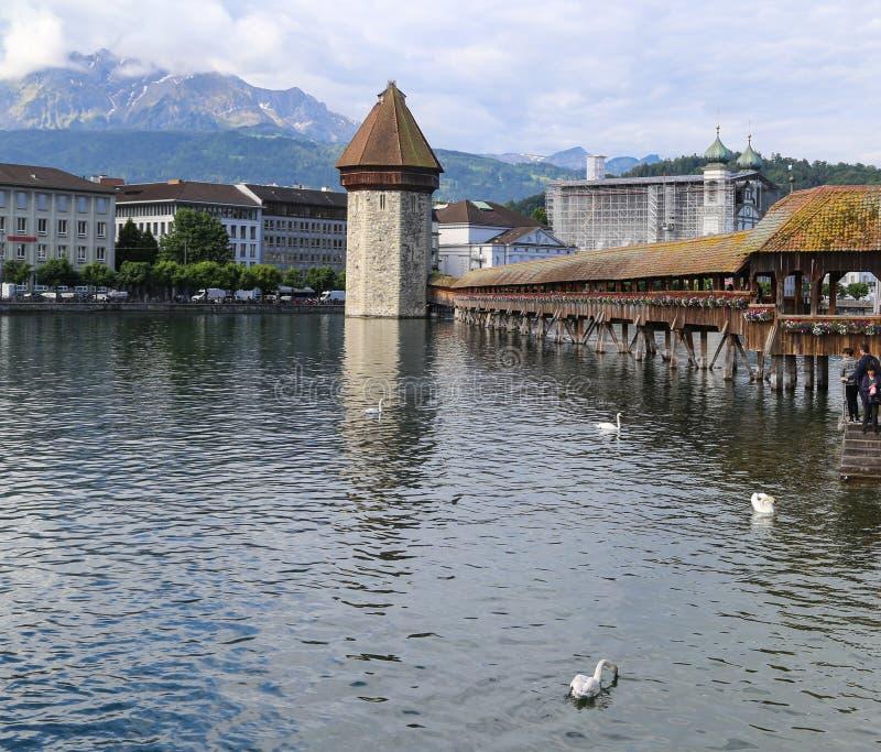 Download Il Paesaggio In Erba Medica Del Lago, Svizzera Immagine Stock - Immagine di corsa, neve: 55358353