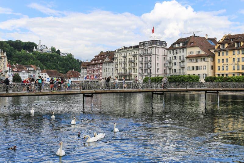 Download Il Paesaggio In Erba Medica Del Lago, Svizzera Immagine Editoriale - Immagine di nubi, swan: 55362720