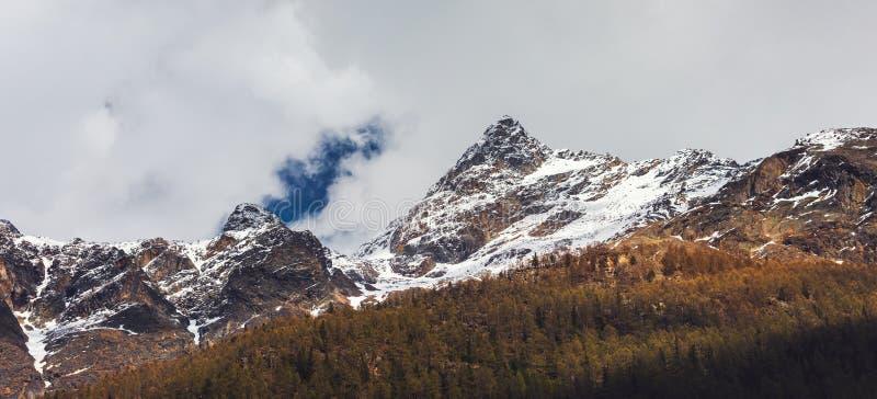 Il paesaggio naturale della catena montuosa del paesaggio di alpino, Svizzera, bella vista delle alpi svizzere idilliache monta c immagini stock