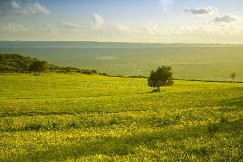 Il paesaggio siciliano fotografia stock