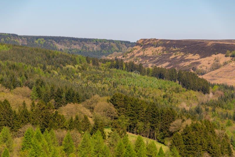 Il paesaggio a York del nord attracca il parco nazionale, Regno Unito fotografia stock libera da diritti