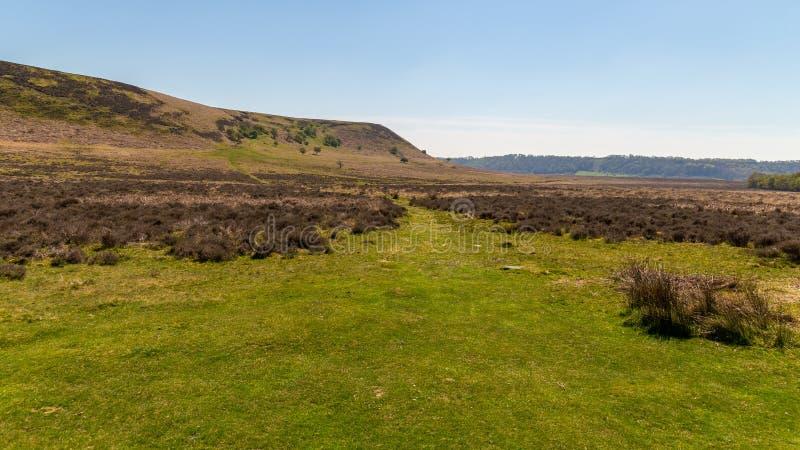 Il paesaggio a York del nord attracca il parco nazionale, Regno Unito immagini stock libere da diritti