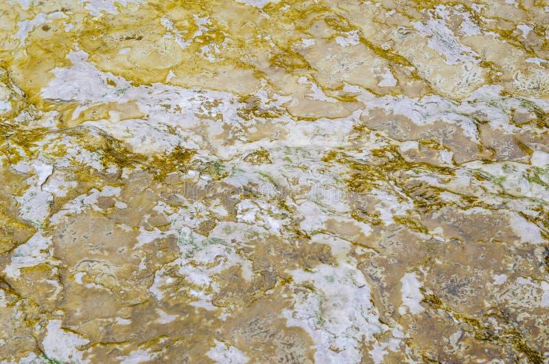 Il paese delle meraviglie del termale di Wai-O-Tapu fotografia stock