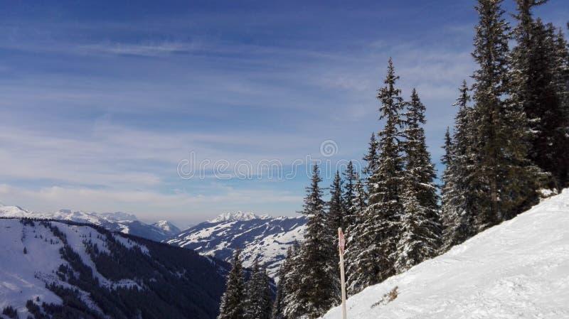 Il paese delle meraviglie 1 di inverno immagine stock