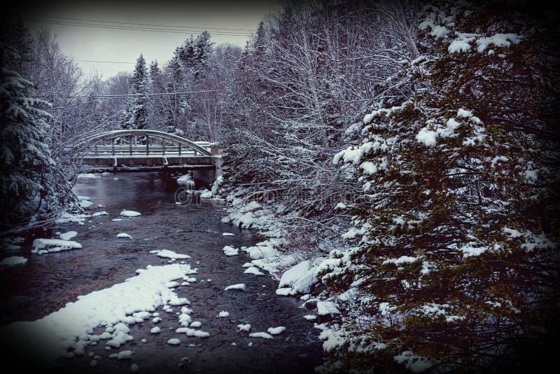 Il paese delle meraviglie di inverno fotografia stock