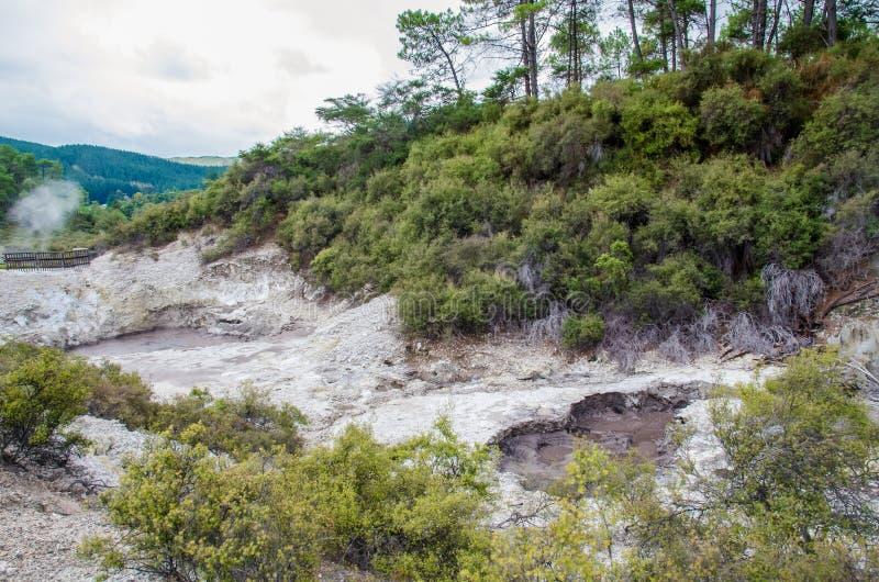 Il paese delle meraviglie termico di Wai-O-Tapu che è situato nel Distretto di Rotorua, Nuova Zelanda fotografia stock libera da diritti