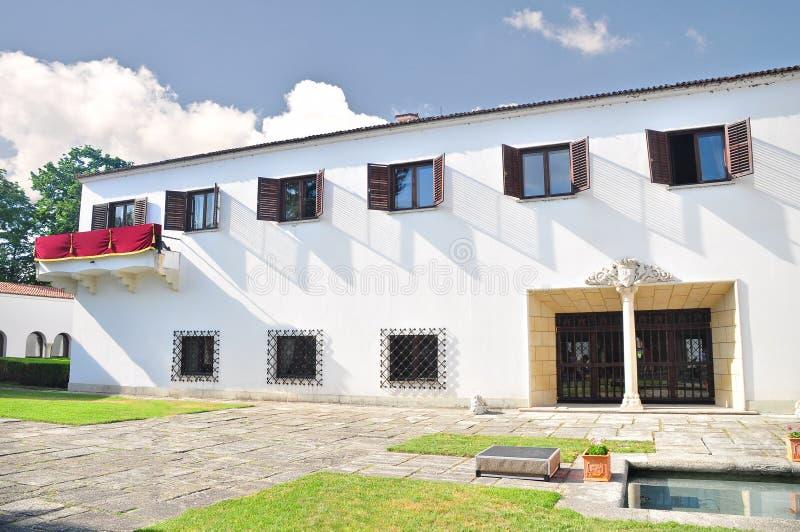 Il palazzo di Elisabeta fotografie stock libere da diritti