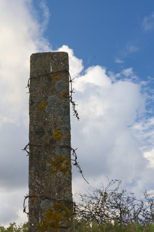 Il palo concreto con filo spinato rimane fotografia stock libera da diritti