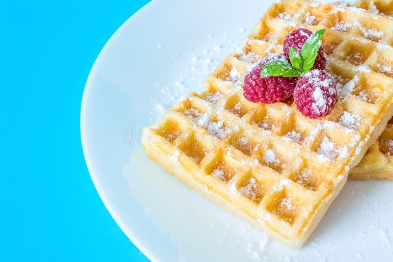 Il pane tostato dolce waffles con i lamponi e un ramoscello delle foglie di menta su una macro bianca del primo piano del piatto fotografia stock libera da diritti