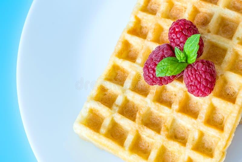 Il pane tostato dolce waffles con i lamponi e un ramoscello delle foglie di menta su una macro bianca del primo piano del piatto  immagini stock
