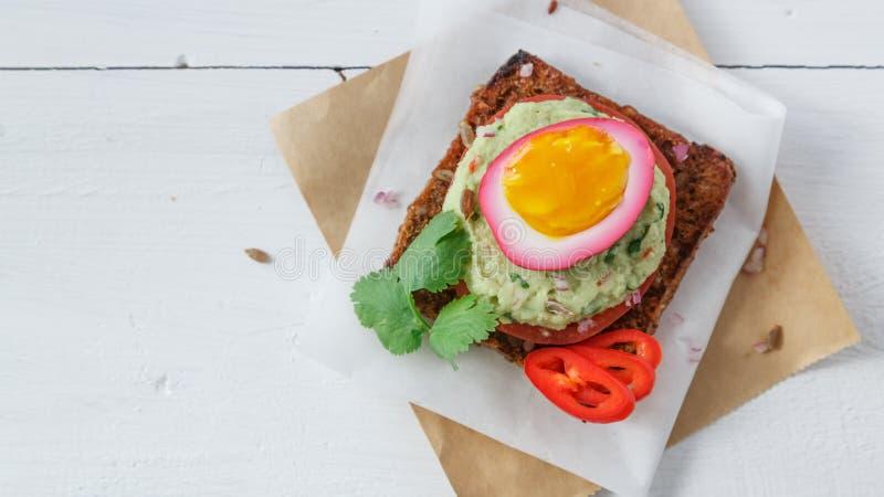 Il panino con la barbabietola porpora ha marinato le uova, l'avocado ed il pomodoro, spazio della copia immagine stock