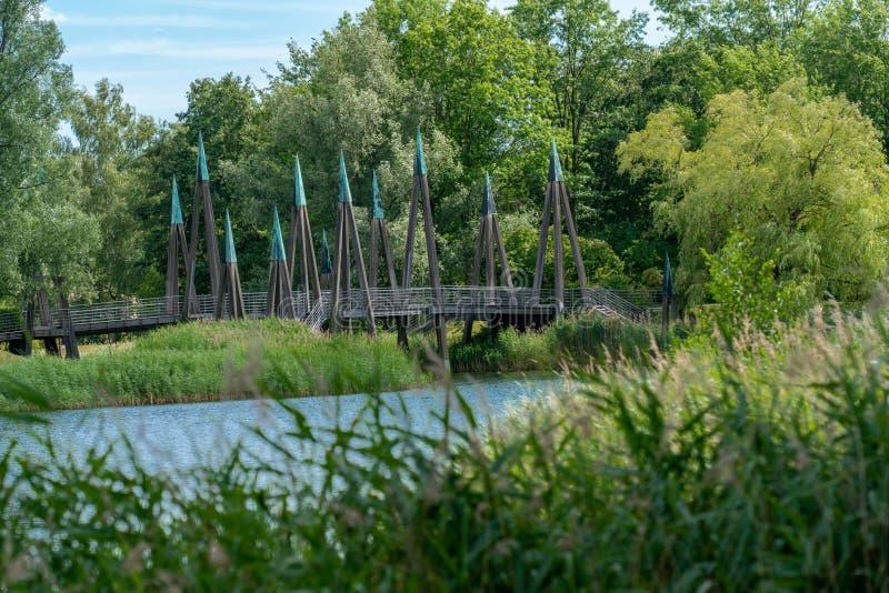 Il panorama scenico di un lago con le canne e le piante ha attraversato da un ponte di legno fotografia stock
