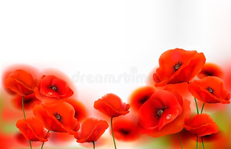 Il papavero rosso fiorisce la priorit? bassa Vettore illustrazione vettoriale