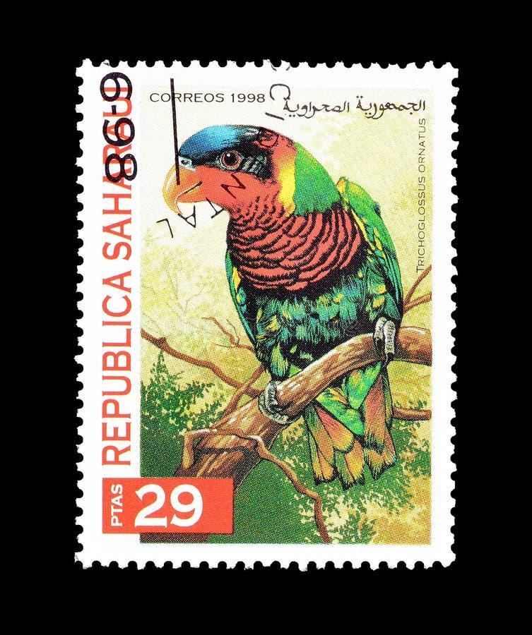 Il pappagallo decorato del lorikeet sul francobollo immagini stock