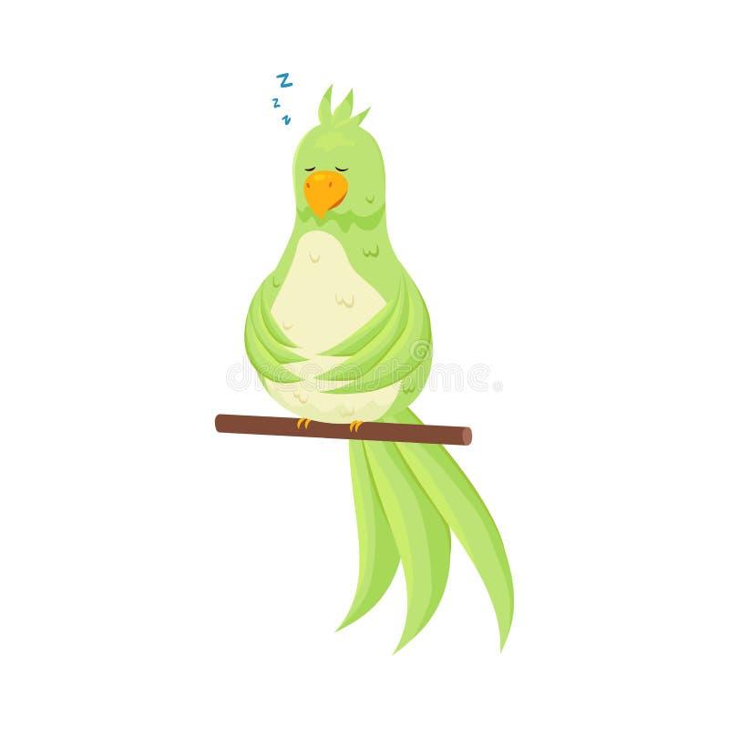 Il pappagallo tropicale verde sveglio sta dormendo nella sua gabbia al bastone illustrazione di stock