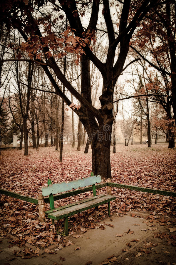 Il parco fotografia stock libera da diritti