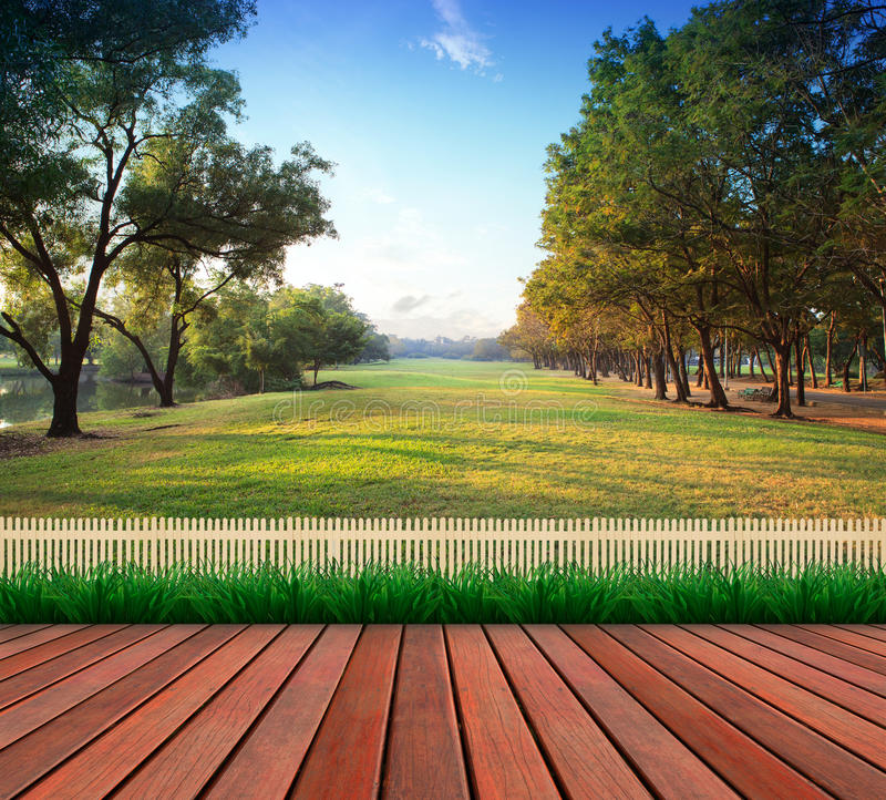 Il parco pubblico del campo di erba verde e del terrazzo di legno usa come sedere naturali fotografia stock libera da diritti