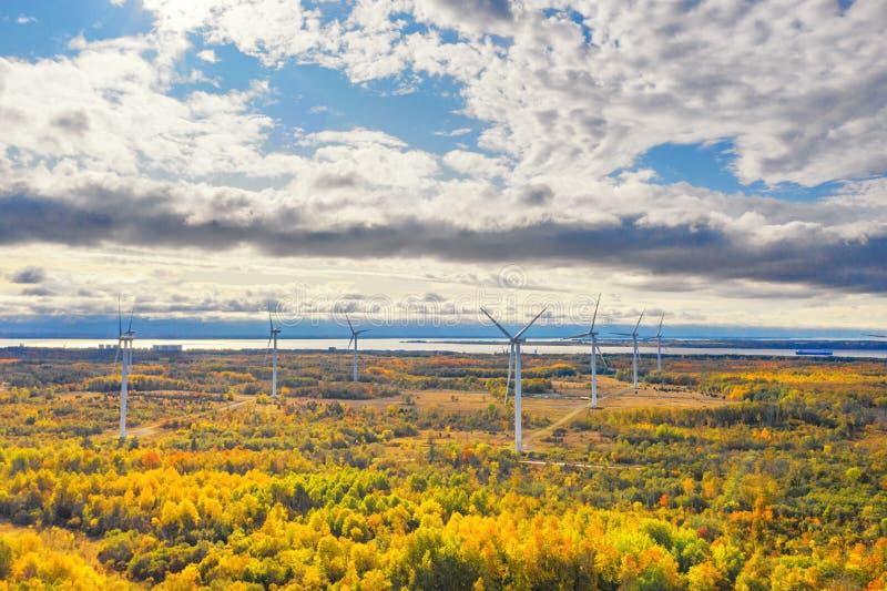 Il parco Windmills di Paldiski Impianto di turbina eolica vicino al Mar Baltico Paesaggio d'autunno con mulini a vento, foresta a fotografia stock