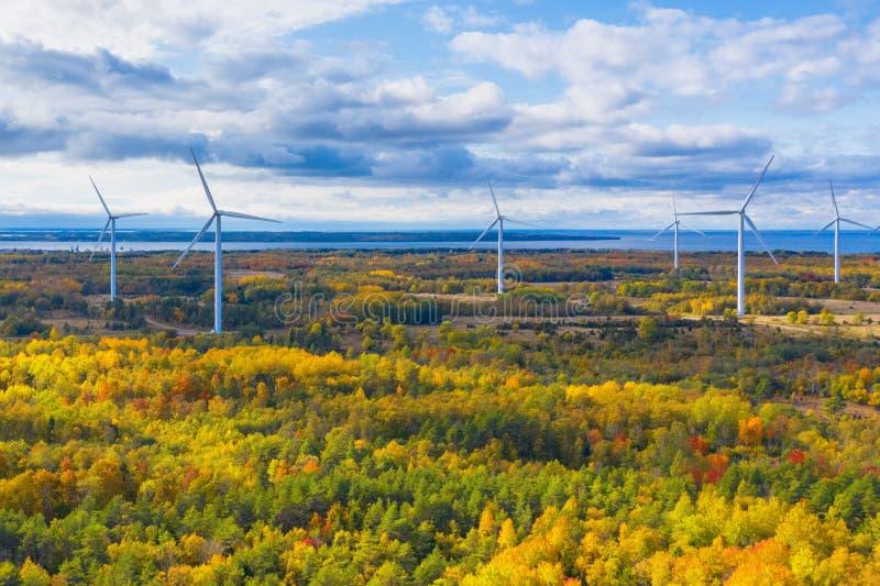 Il parco Windmills di Paldiski Impianto di turbina eolica vicino al Mar Baltico Paesaggio d'autunno con mulini a vento, foresta a immagini stock libere da diritti