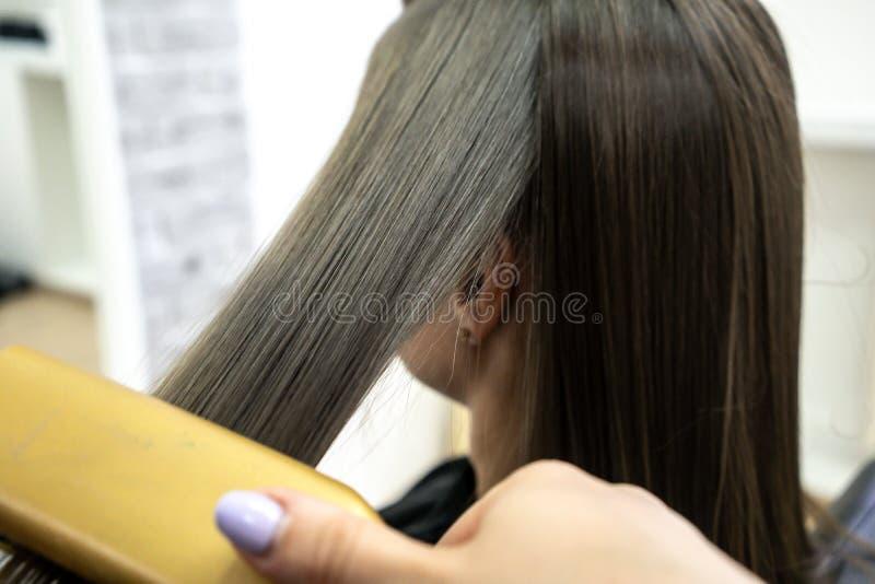 Il parrucchiere fa la laminazione dei capelli in un salone di bellezza per una ragazza con capelli castana immagine stock libera da diritti